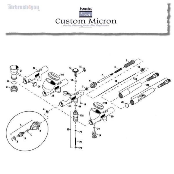 #1A   Nadelkronenkappe CM-Image