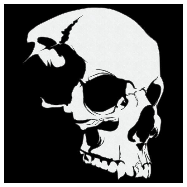 Skull #8   Totenkopf Airbrush Schablone   ca.15 x 12 cm