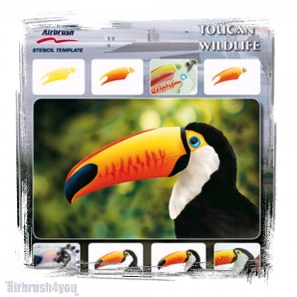 H & S Stencil | Toucan Wildlife-Image